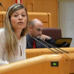 El PSOE exige que el Gobierno central reactive las becas