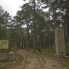 El 15 de marzo comienza el plazo de autorización para realizar campamentos en espacios naturales