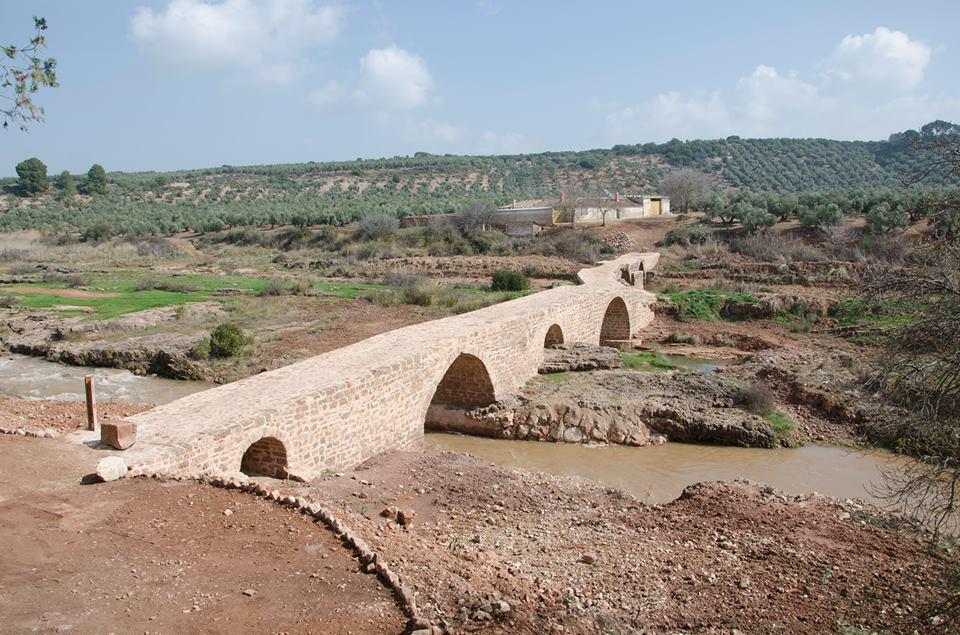 puente mocho 1