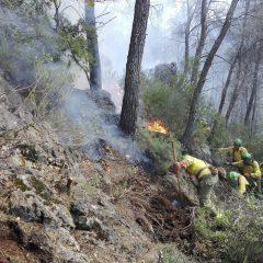 Un incendio arrasa una hectárea de pinar y matorral en la Hortizuela Alta